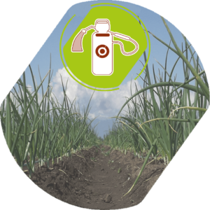 Herbicidas